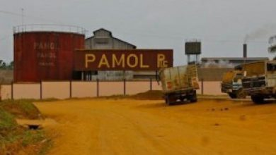 Photo of Nearly 10 billion FCFA desperately needed to revive PAMOL activities
