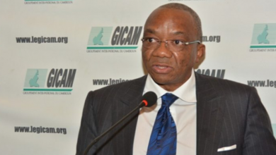 Photo of GICAM boss nails taxation director: urges Biya to intervene to instil order in business sector