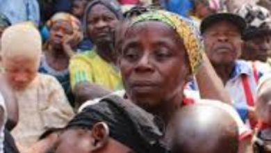 Photo of UN Reveals 8000 Persons Have Fled North West, South West Regions To Nigeria Two Weeks