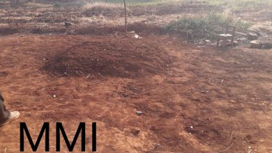 Photo of Mass grave for at least 27 murdered by soldiers in Ngarbuh