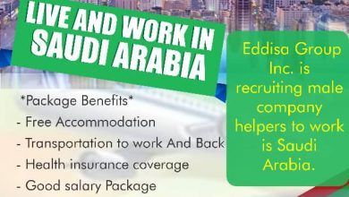 Photo of Edissa Group: most reliable gateway to jobs and studies abroad
