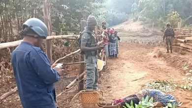 Photo of Shock Grips Ndu As Bullet Kills Farm-Going Woman