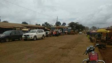 Photo of Security forces Intercept huge Consignment of Marijuana in Ngoketunjia Division