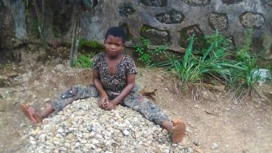 Photo of Cameroon: Video of minor crushing stones for construction attracts global attention