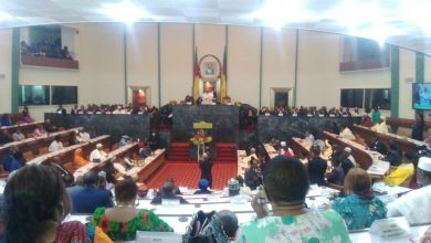 Photo of Cameroon to finally recognise Dual Nationality