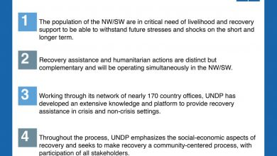 Photo of UN Development Programme outlines recovery plan for North West and South West regions