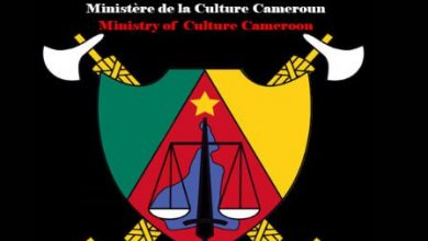 Photo of The MINAC law causing outrage in Cameroon.